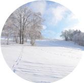 winter-2
